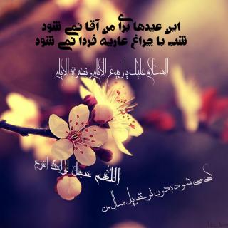 السلام علي ربيع الانام و نضره` الايام