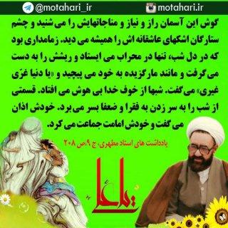 ظلم و کوتاهی ما شیعیان نسبت به امیرالمؤمنین علی علیه السلام